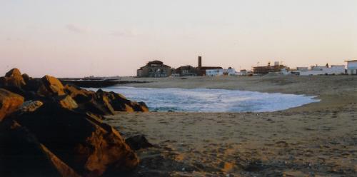 beach01small.jpg